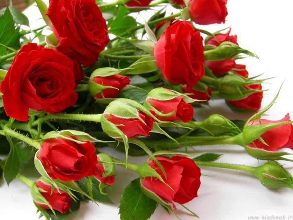5 марта 2017 года на Красной площади возложение цветов к могиле Вождя народов  товарищу Сталину Иосифу Виссарионовичу!