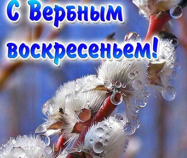 """РОО """"БОРОДИНО"""" поздравляет всех православных с вербным воскресеньем 12 апреля 2020 года!"""